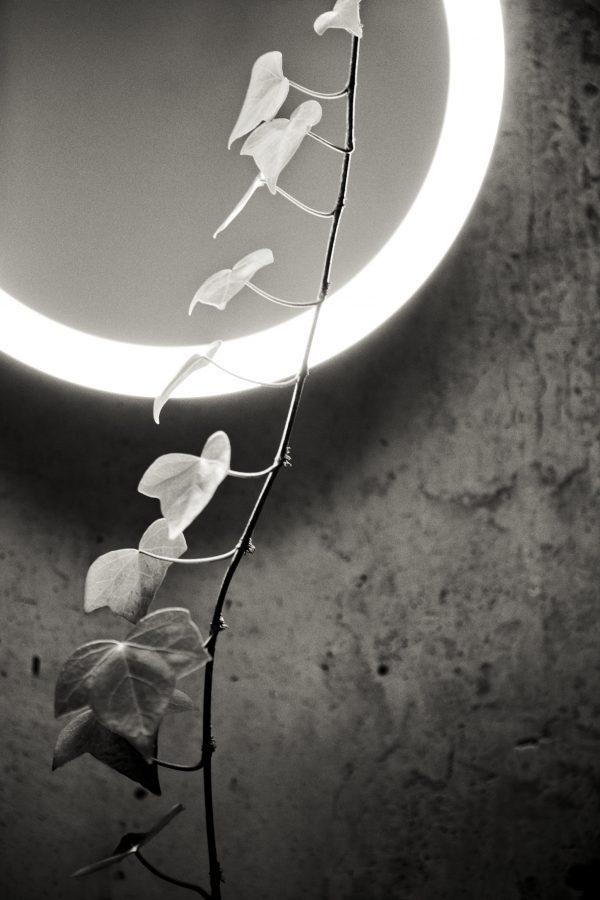 Amigo Lamp Design Gonzalo Mila en Miguel Mila voor Santa Cole